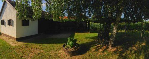 V-28  Vikendica i vinograd